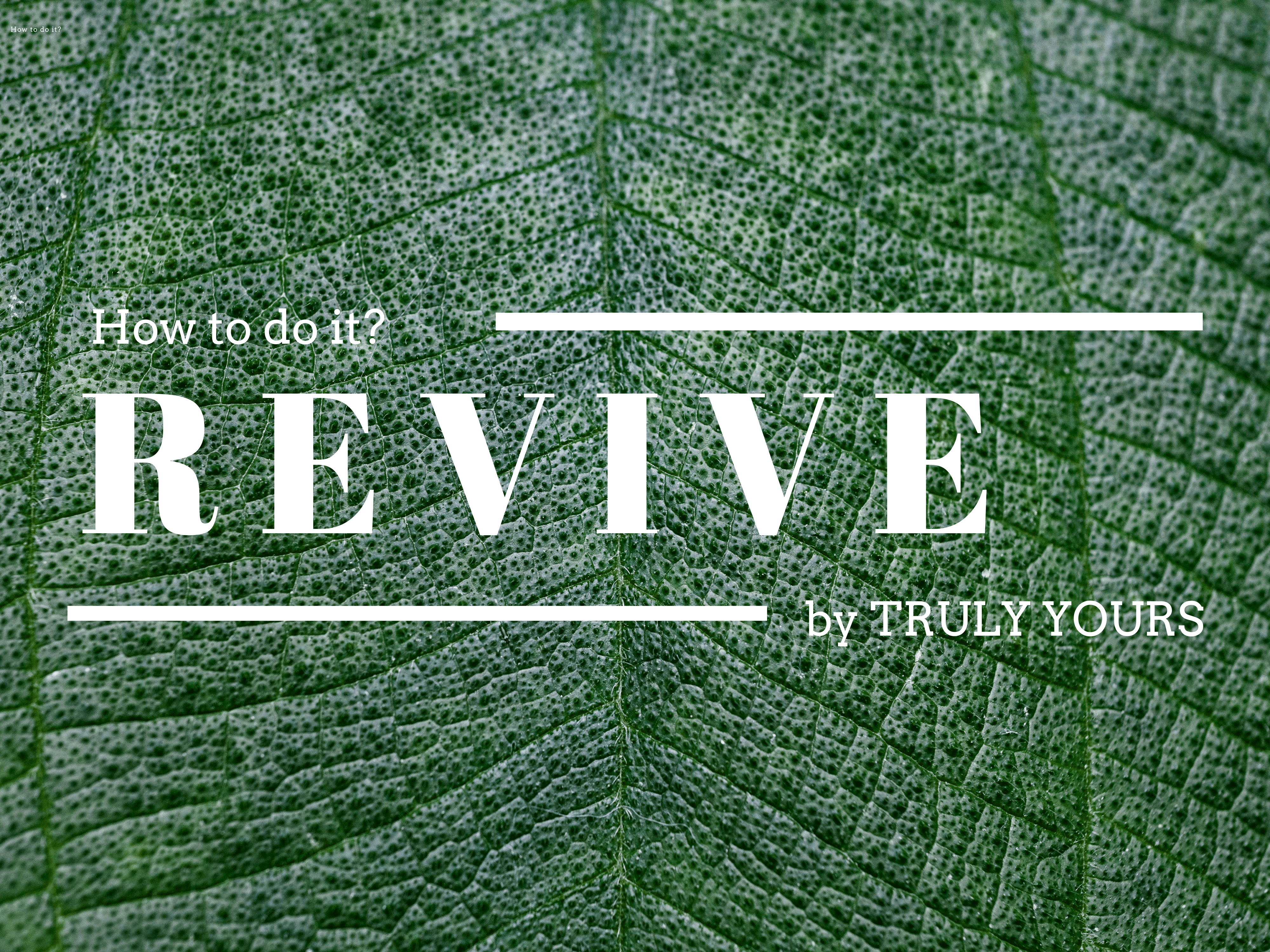 revive_fashion mode Bekleidung nachhaltig