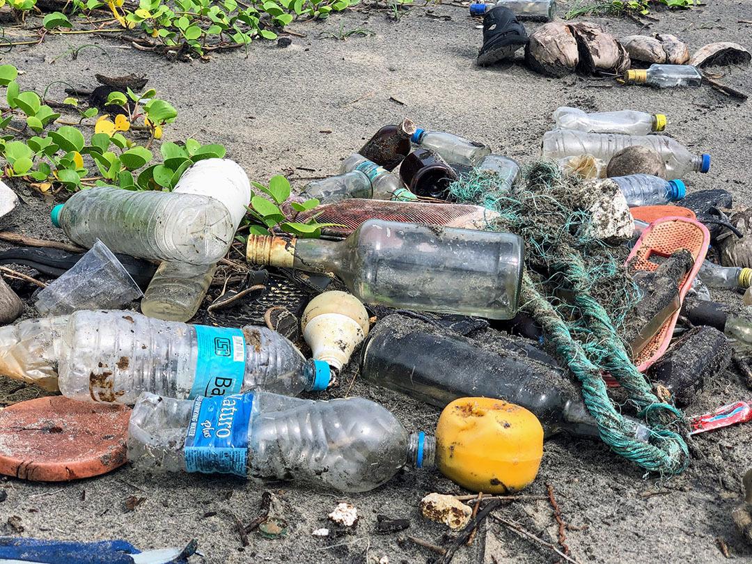plastikmüll plastik plasticpollution microplastic sustaynme