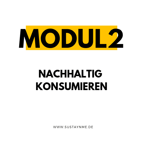 nachhaltig leben online kurs mini sustaynme modul 2